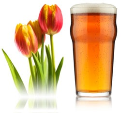 Tulips-and-Beer.jpg